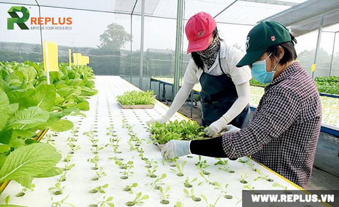 startup-nông-nghiệp-công-nghệ-cao-2018